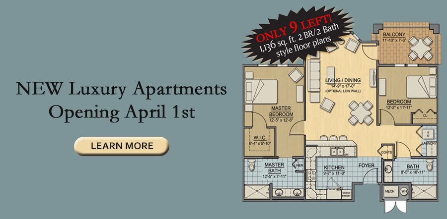 Only 9 Luxury Apartments left! Opening April 1st!
