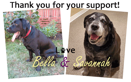 Thank you for your support! Love Bella and Savannah